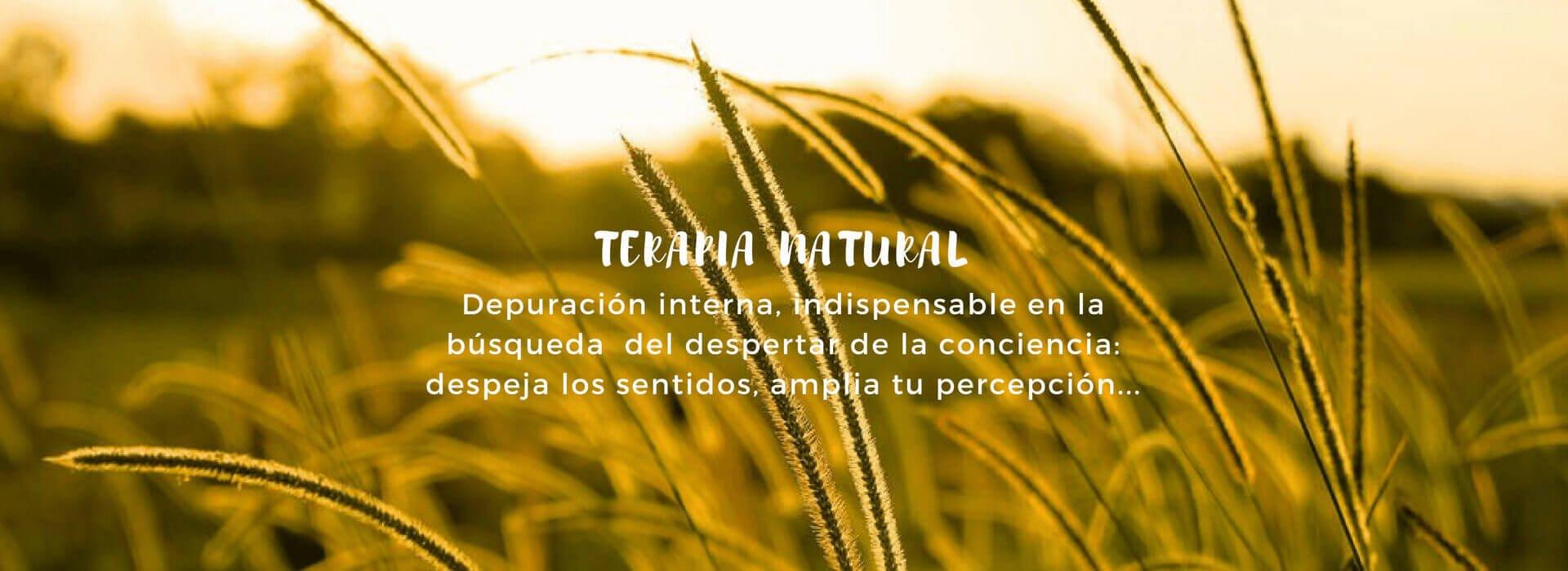 DePura Terapia Colónica es una Terapia Natural